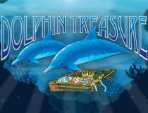 Dolphin Treasure logo